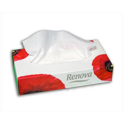 Pañuelos faciales Renova 053045