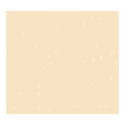 Cartulina de color 50x65cm Iris Canson 400080163