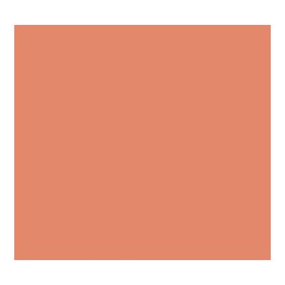Cartulina de color 50x65cm Iris Canson 400080164