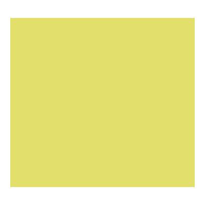 Cartulina de color 50x65cm Iris Canson 400080165