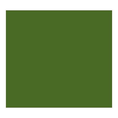 Cartulina de color 50x65cm Iris Canson 400080166