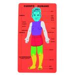 Puzle de goma eva cuerpo humano 68002800