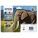 Pack Multicolor Epson T2428 C13T24284010