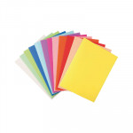 Subcarpeta A4 cartulina reciclada pastel Exacompta Forever 220g 5 colores surtidos (20 por color)
